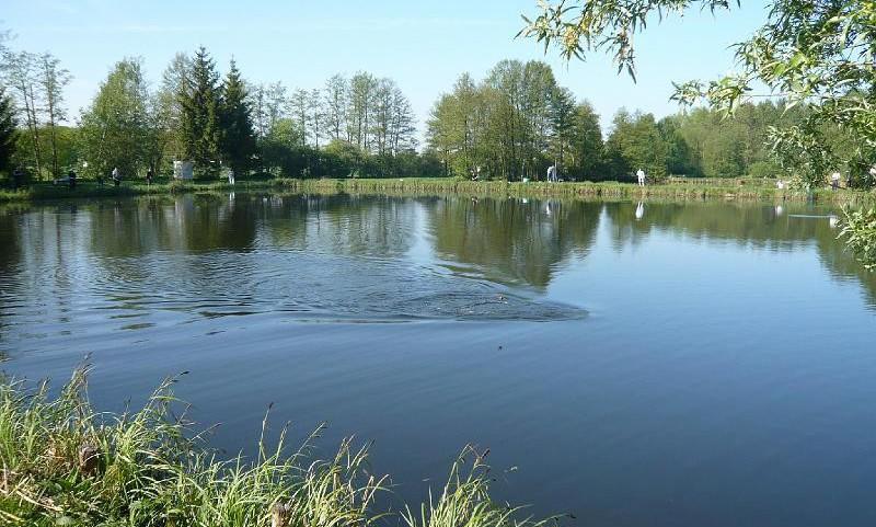 Les rapports la pêche le domaine de Sverdlovsk